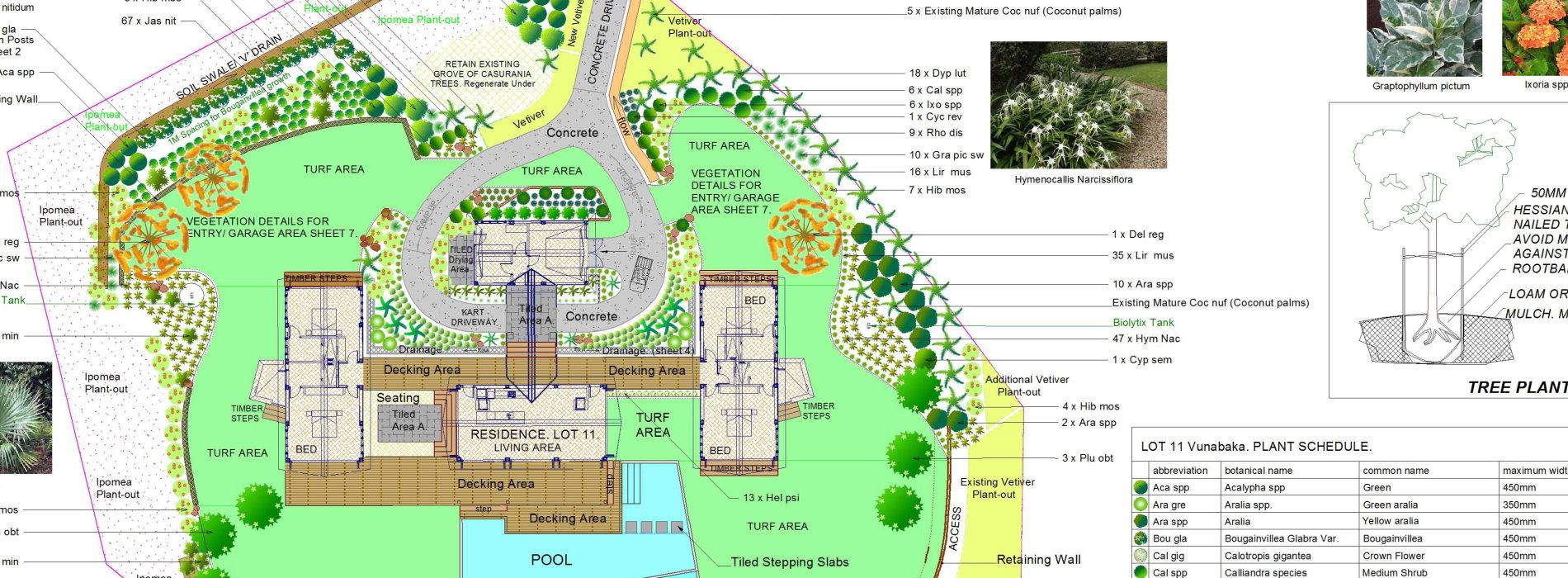 vegetation layout